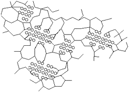Schematic structure of a hybrid polymer based on polyanions